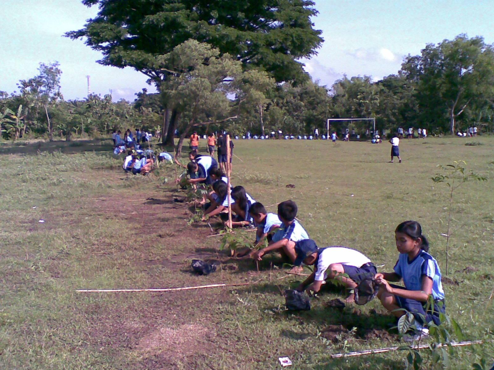 Program penanaman pohon dilingkungan sekolahan selain menjadikan
